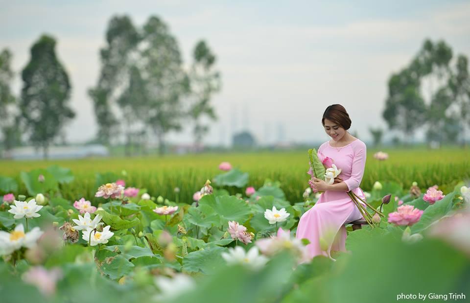 City Hà Nội