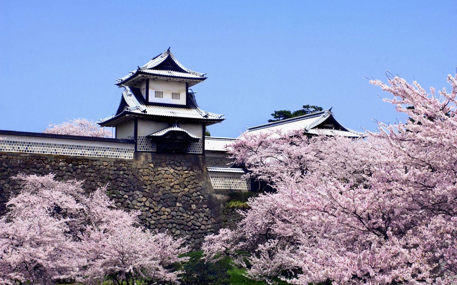 Nhật Bản: Hà Nội - Tokyo - Hakone - Núi Phú Sĩ